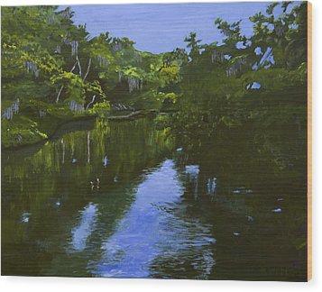 Turkey Creek Wood Print by Roger Wedegis