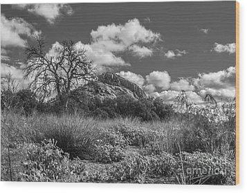 Turkey Hill Bw Wood Print