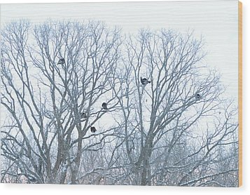 Wood Print featuring the photograph Turkey Tree by Dacia Doroff