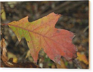 Turn A Leaf Wood Print by JAMART Photography