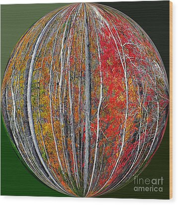 Turning Leaves Wood Print by Scott Cameron
