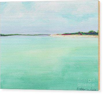 Turquoise Caribbean Beach Horizontal Wood Print
