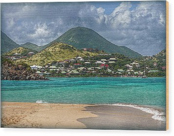Wood Print featuring the photograph Turquoise Paradise by Hanny Heim