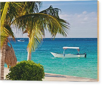 Turquoise Waters In Cozumel Wood Print