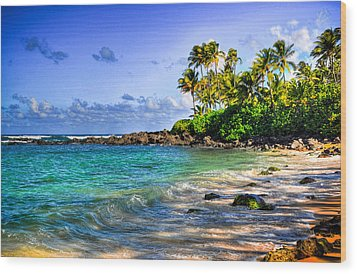 Turtle Beach Wood Print by Kelly Wade