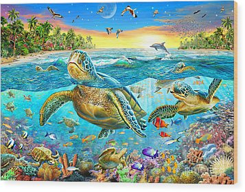 Turtle Cove Wood Print by Adrian Chesterman