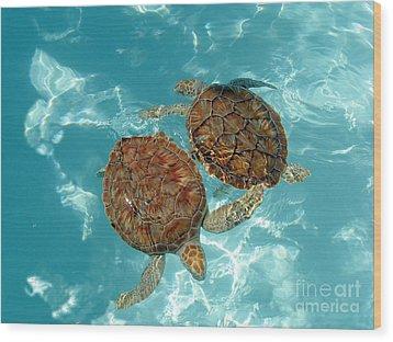 Turtle Dance Wood Print by Irina Davis