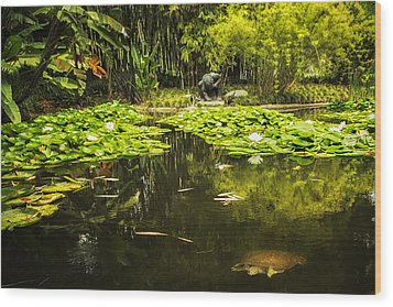 Turtle In A Lily Pond Wood Print