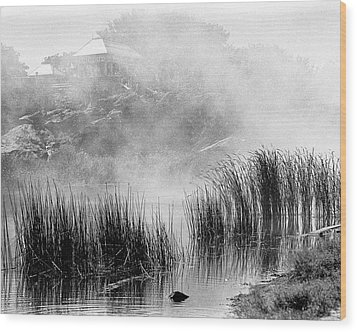 Wood Print featuring the photograph Turtle Pond Fog by Dave Beckerman