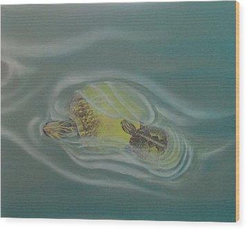 Turtle Pond Iv Wood Print
