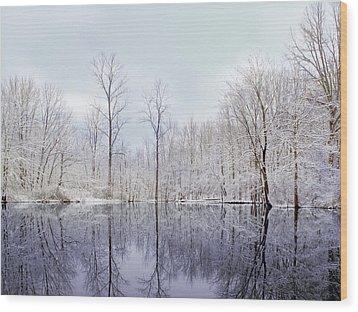 Turtle Pond Wood Print by Kitty Ellis