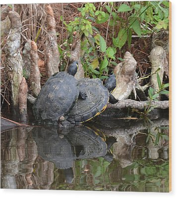 Turtles  Wood Print by Julie Cameron