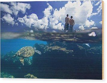 Turtles View Wood Print by Sean Davey