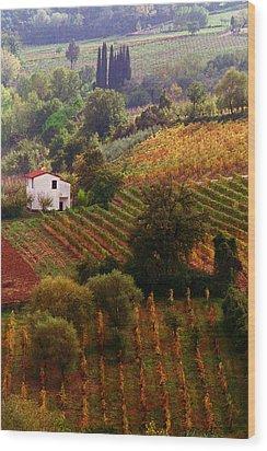 Tuscan Autumn Wood Print by John Galbo