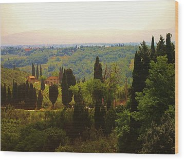 Tuscan Landscape Wood Print by Dany Lison
