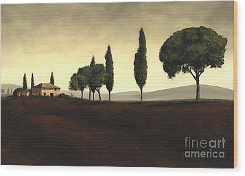 Tuscan Style  Wood Print by Michael Swanson