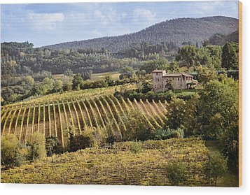 Tuscan Valley Wood Print by Dave Bowman