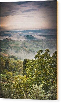Tuscan View Wood Print by Silvia Ganora