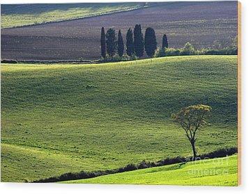 Tuscany Green Hills Wood Print by Arie Arik Chen