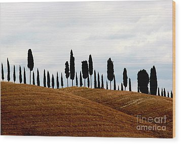 Tuscany Hill Wood Print by Arie Arik Chen