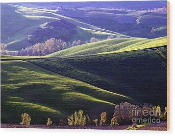 Tuscany Hills Wood Print by Arie Arik Chen