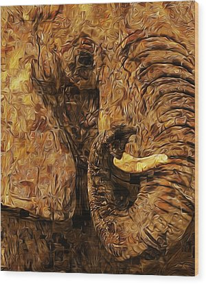 Tusk - Happened At The Zoo Wood Print by Jack Zulli