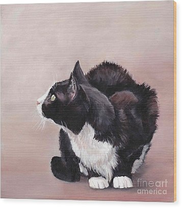 Tuxedo Cat Bird Watcher Wood Print by Charlotte Yealey