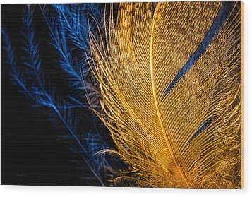 Wood Print featuring the photograph Tweety Bird by Bob Orsillo