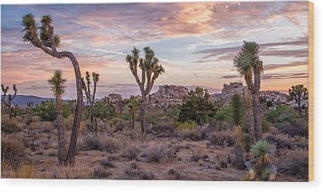 Twilight Comes To Joshua Tree Wood Print by Peter Tellone