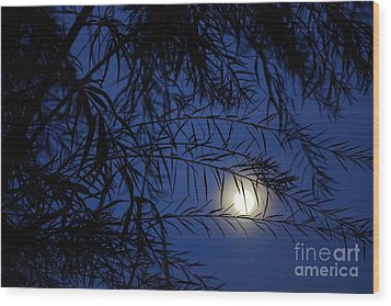 Twilight Moon Wood Print