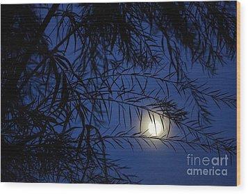 Twilight Moon Wood Print by Kerri Mortenson