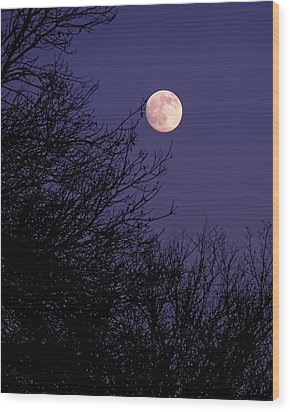 Twilight Moon Wood Print by Rona Black