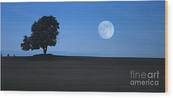 Wood Print featuring the photograph Twilight Solitude by Sharon Elliott
