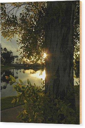 Wood Print featuring the photograph Twilight Splendor by Deb Halloran