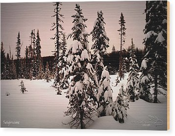 Twilightwinter Wood Print by Guy Hoffman