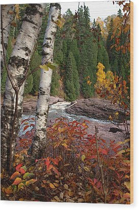 Twin Aspens Wood Print