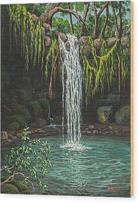 Twin Falls Wood Print by Darice Machel McGuire