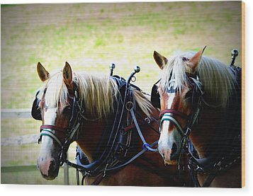 Wood Print featuring the photograph Twin Horses by Cathy Shiflett