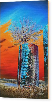 Wood Print featuring the photograph Twin Silos by Karen Newell