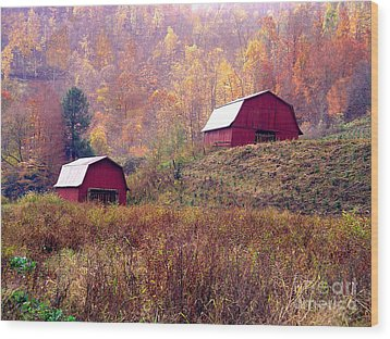 Twin Tobacco Barns Wood Print by Annlynn Ward