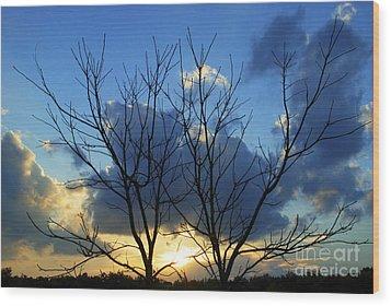 Twin Trees Wood Print