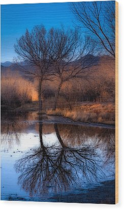 Wood Print featuring the photograph Twin Trees by Kristal Kraft