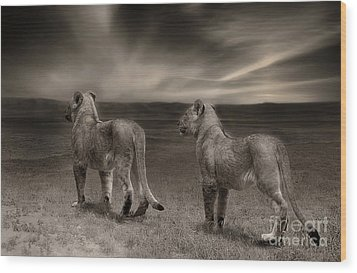 Wood Print featuring the photograph Twins 2 by Christine Sponchia