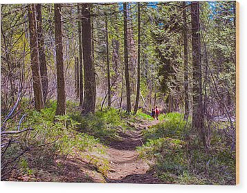 Twisp River Trail Wood Print by Omaste Witkowski