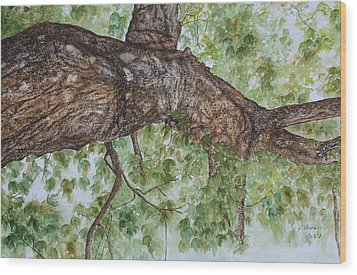 Twisted Maple Wood Print by Patsy Sharpe