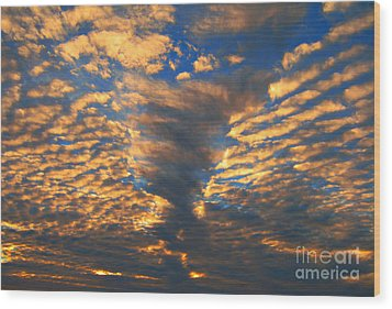 Wood Print featuring the photograph Twisted Sunset by Janice Westerberg