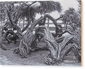 Twisted Tree - 01 Wood Print by Gregory Dyer