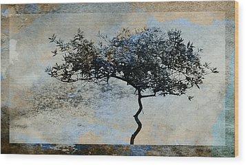 Twisted Tree Wood Print by David Ridley
