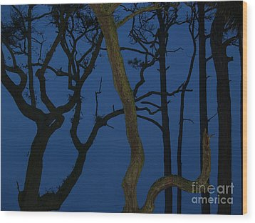 Twisted Trees At Twilight Wood Print by Anna Lisa Yoder