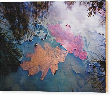 Two Autumn Leaves Wood Print by Milan Surkala